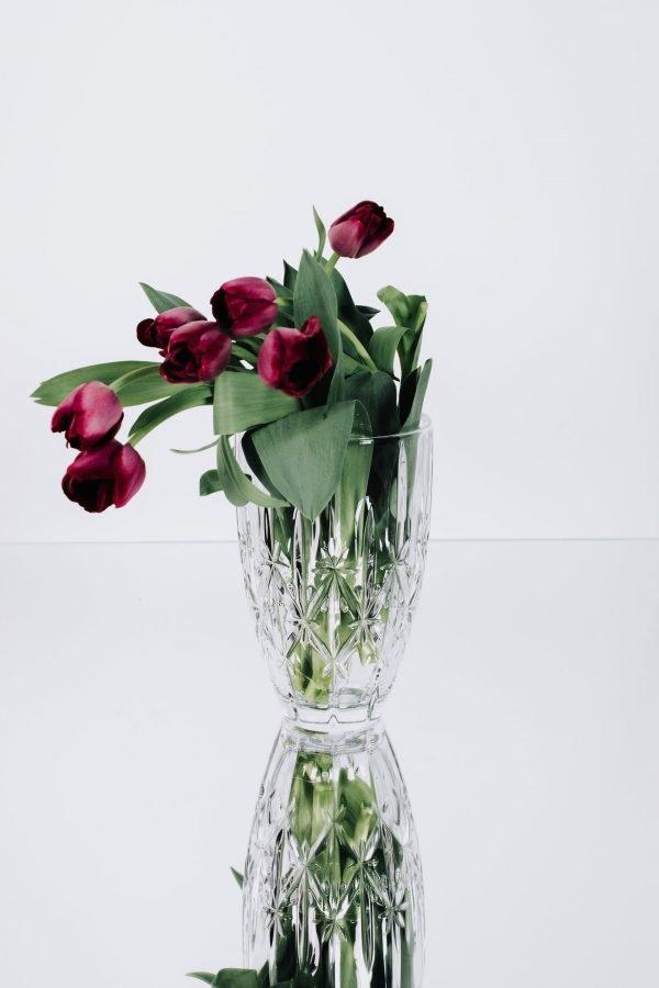 vase-wtfd-med-a